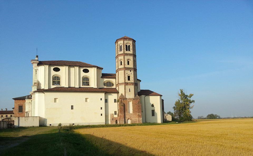Il riso e l'abbazia di Lucedio, un binomio inscindibile