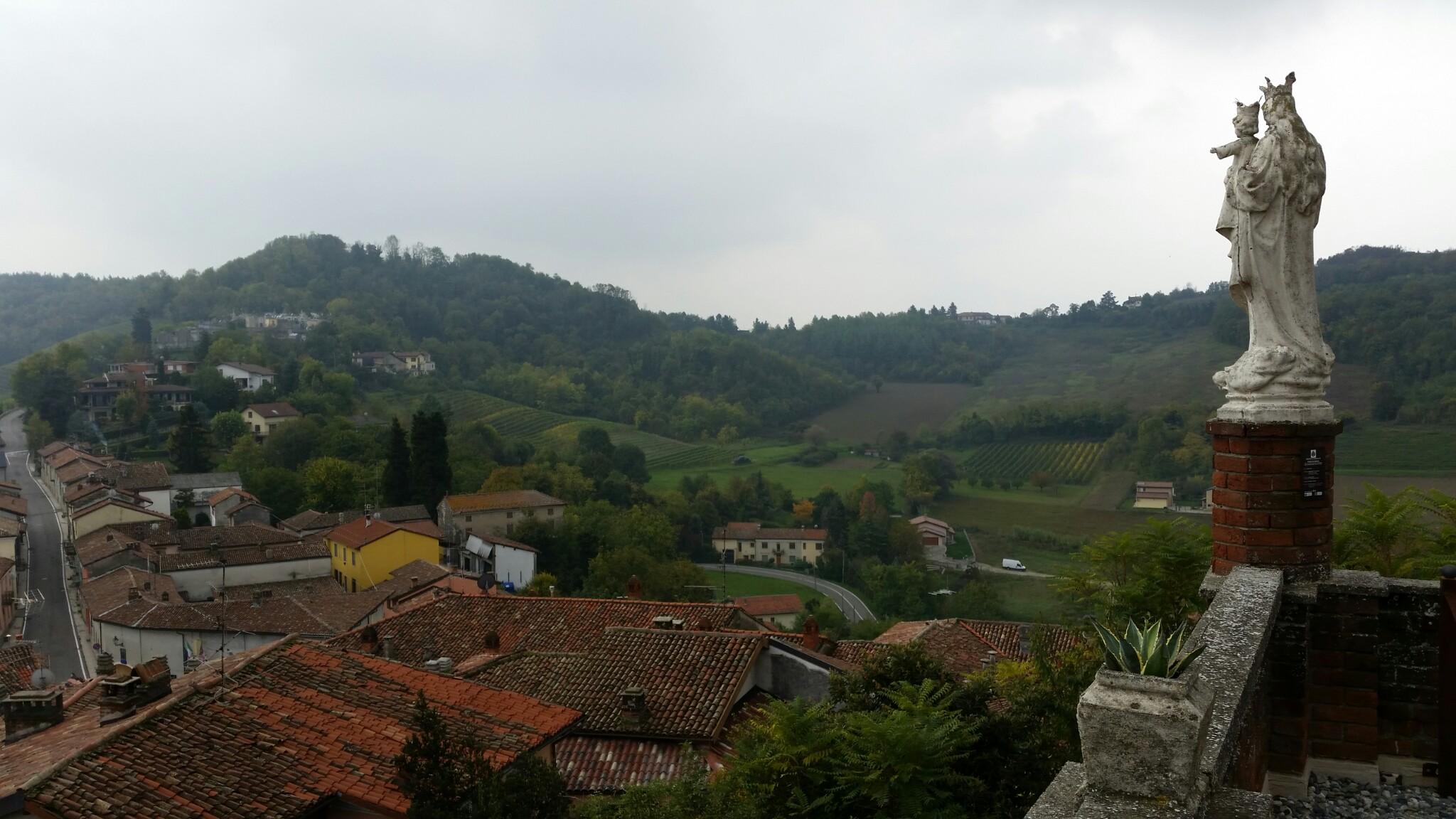 Scorcio paesaggistico nel Monferrato Casalese (Ozzano Monferrato)