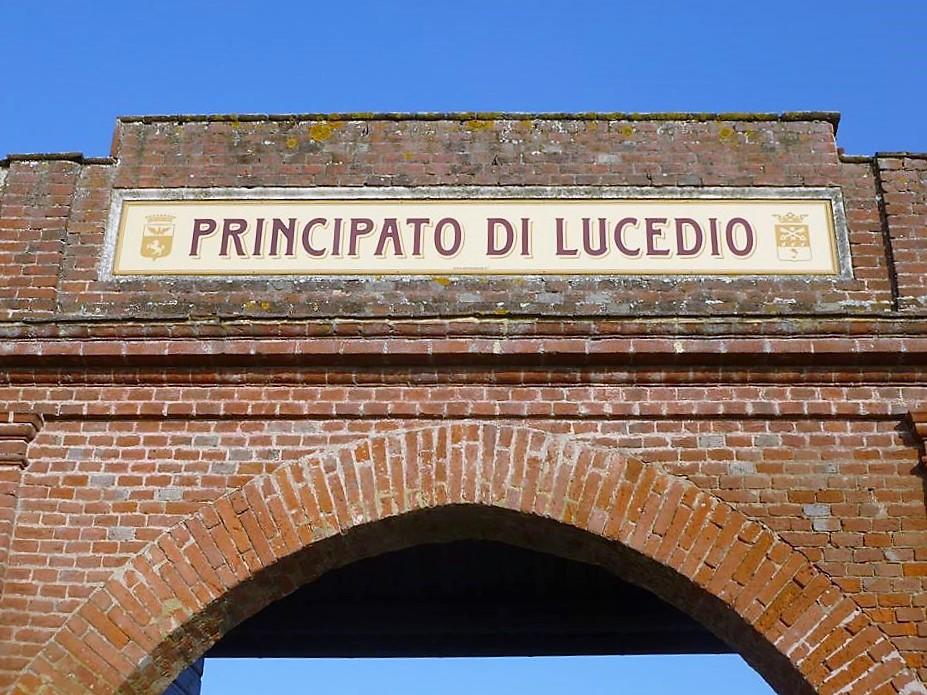 Il riso in Piemonte? Lo introdussero i monaci di Lucedio, bonificatori e innovatori