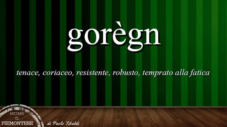 """Pillole di piemontese - usi linguistici dell'aggettivo """"gorègn"""""""