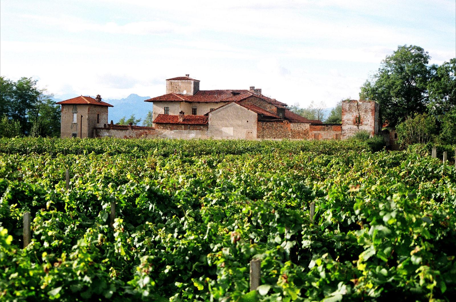 La villa rustica del Cavenago ('500), circondata dalle vigne, sulla prima collina