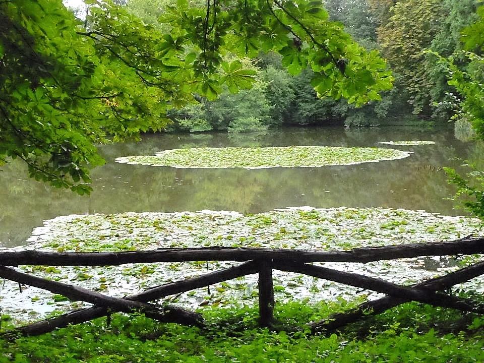 Parco di Agliè - scorcio del laghetto